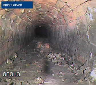 Camera Survey of Brick 